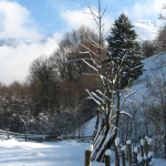 Iarna rustica,pensiunea La Craita, Bran