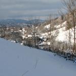 Panorama,pensiunea La Craita, Bran