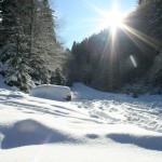 Stropi de soare,pensiunea La Craita, Bran